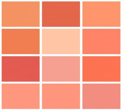 salmon-chart_12